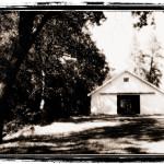 Pines 1852 Photos